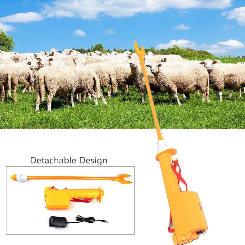 cattle prod red