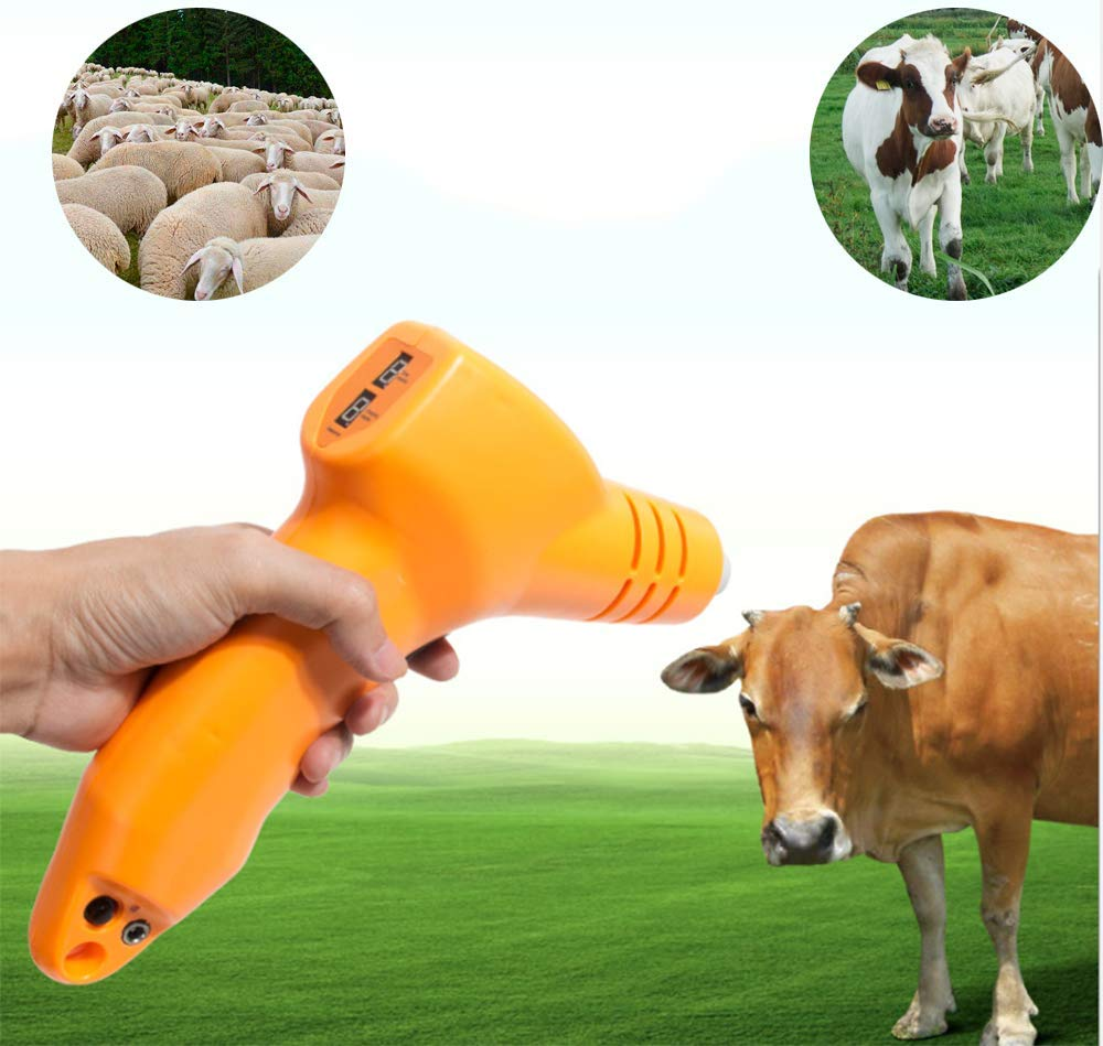 Animal Dehorner Kit Fast Heating Cattle Head Airgun Type Calf Chamfer Electric Iron Ceramic Bloodless Angle Devices for Lamb Calf
